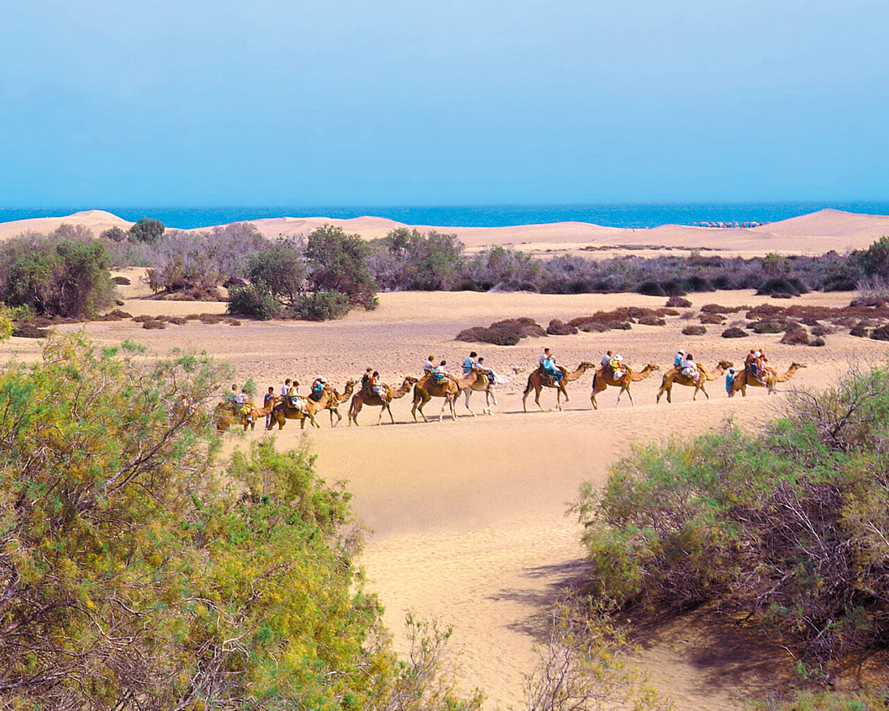 Dunes de maspalomas grande canarie espagne 5 - 4 8
